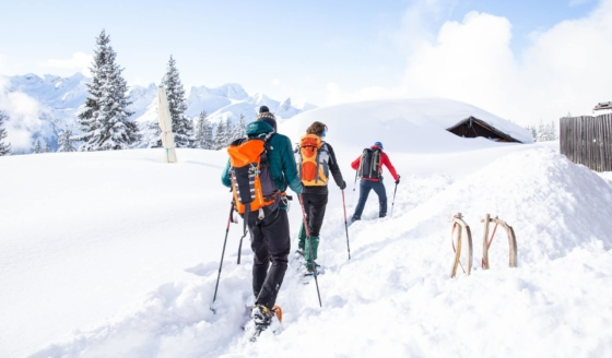 Basiscursus Sneeuwschoenwandelen, Oostenrijk, Kleinwalsertal (Alleen boekbaar voor leden NKBV Regio Oost/Regio Gelderland)
