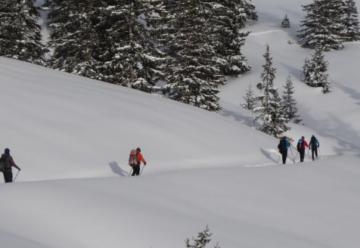 Wat is nu Sneeuwschoenwandelen?