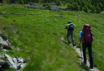 Lopen met wandelstokken: Voordelen, techniek en tips
